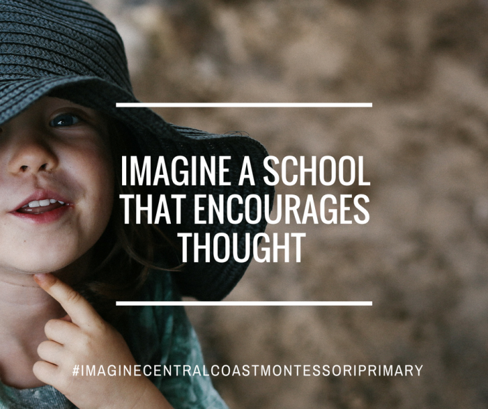 Imagine Central Coast Montessori Primary School