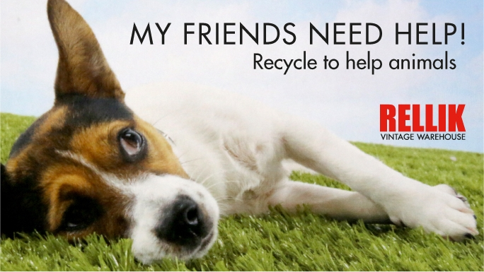 Recycle To Help Animals In Need Chuffed Non Profit
