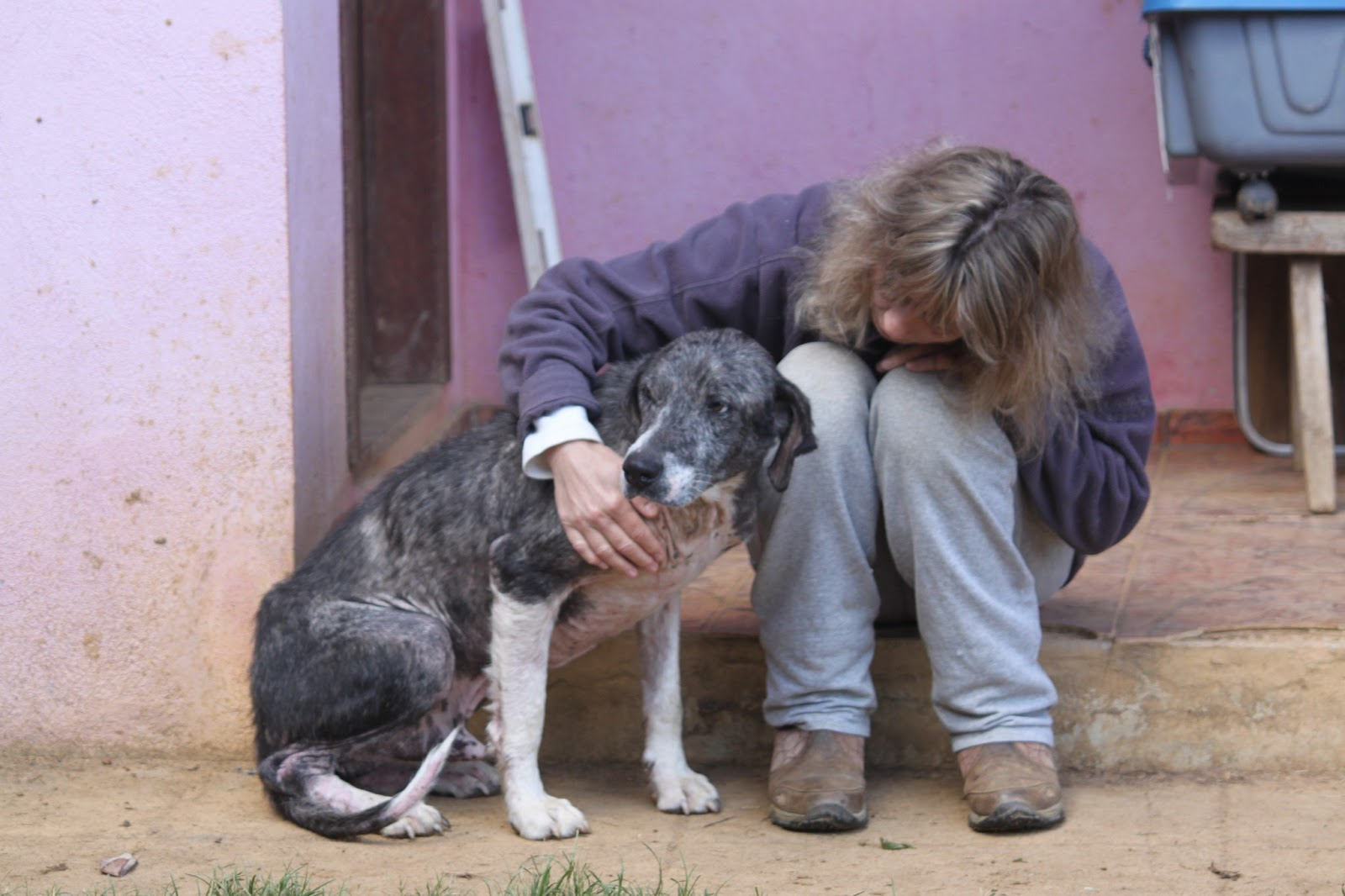 What are some well-known animal rescue sanctuaries?